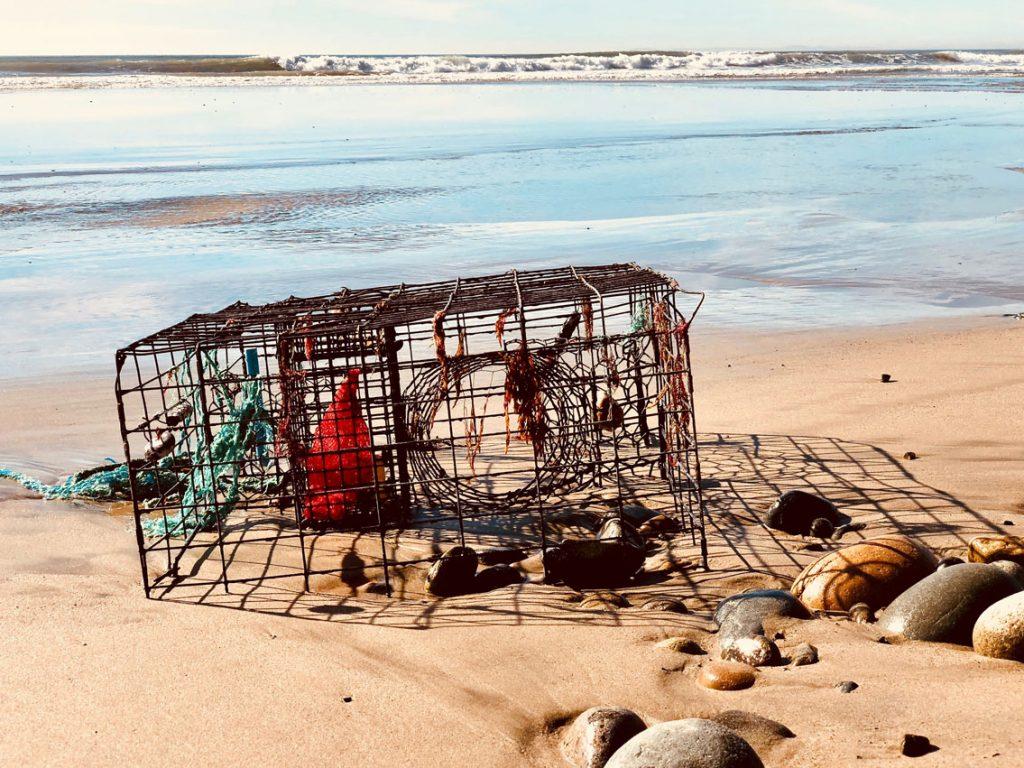 iron cage on a beach