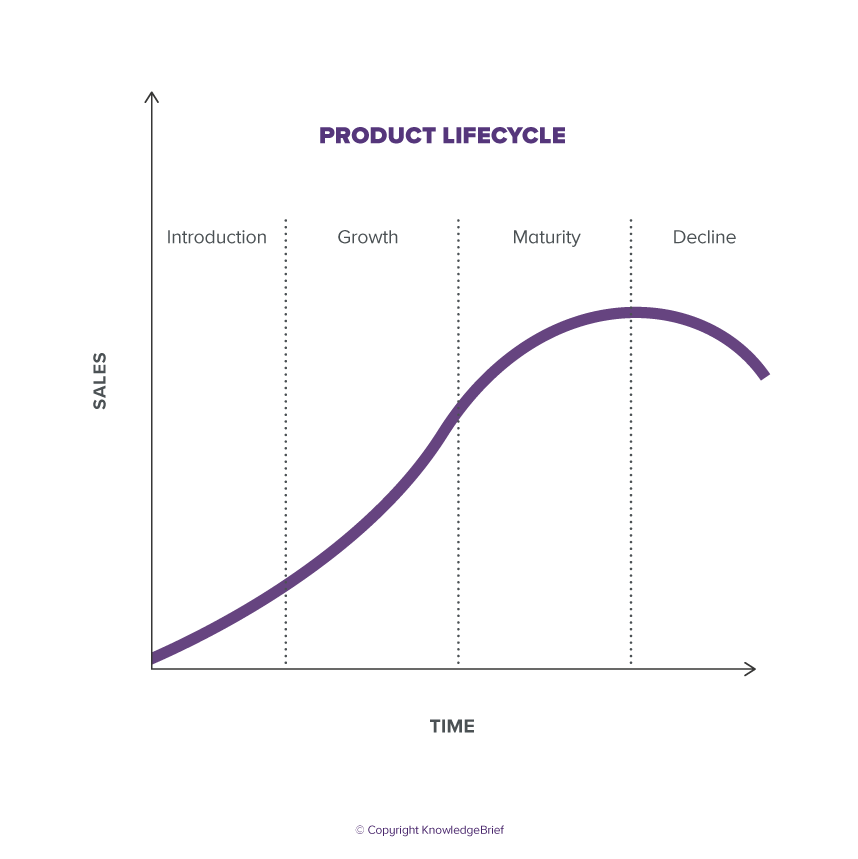 the product lifecycle explained