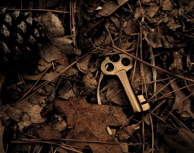 key hidden in leaves