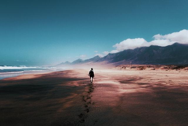 person walking through wilderness